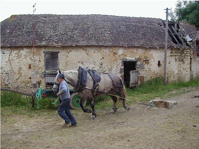 En 1999, la cour de terre est souvent innondée et gadoueuse,  les chevaux passent plus facilement que les voitures!